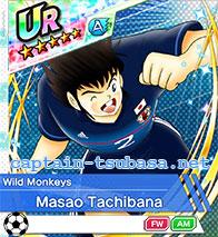 Masao Tachibana - Wild Monkeys